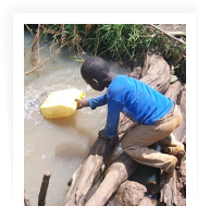 Young boy fetching water from a swamp